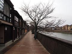 浅野川沿いの風情